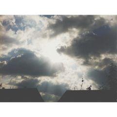 photography nature sun