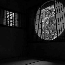japan black & white