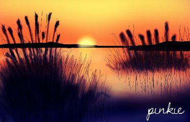 nature sunset summer love travel