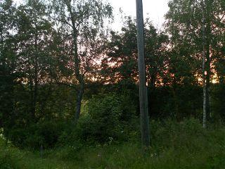 nature summer sunset finland photography