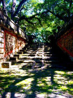 viscaya garden ombre