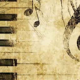 music life musica vida